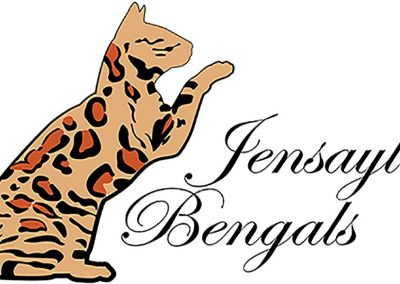 Jensayla Bengals logo